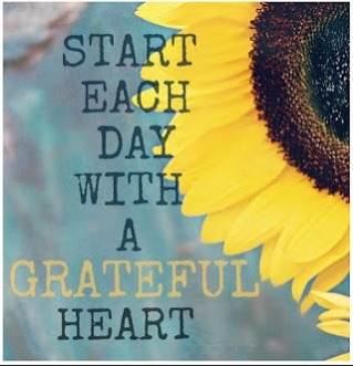 sunflower gratitude quote