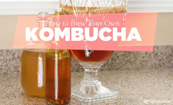 Learn How to Brew Kombucha Tea at Home – Here's Everything You Need to Know