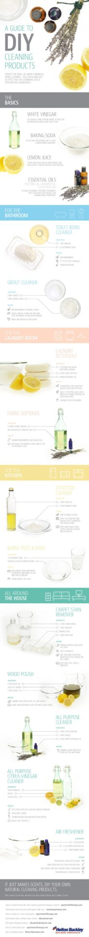 diy-cleaning-products-info-graphic
