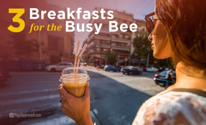 Busybee Article