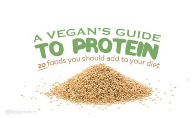 a vegans guide to protein