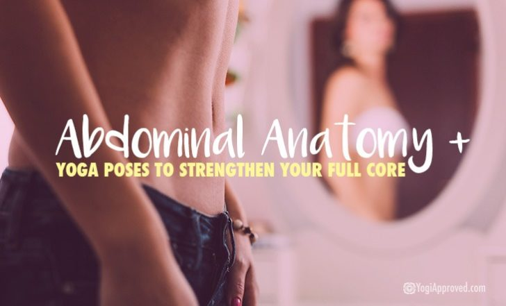Abdominal Anatomy + Yoga Poses to Strengthen Your Full Core