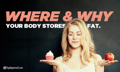 body stores fat featured image