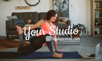 your studio article