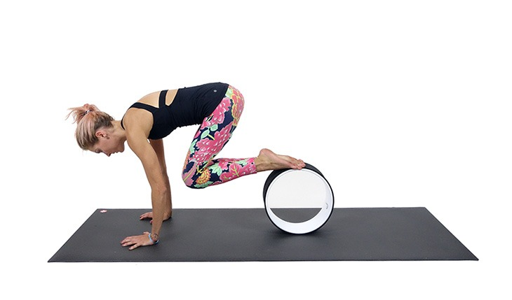 yoga-wheel-abs-plank
