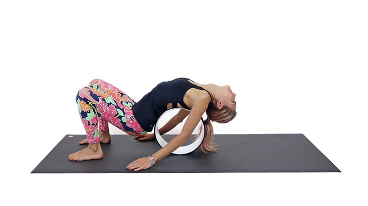 ashotn-yoga-wheel-stretch-and-lengthen
