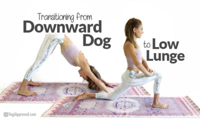 down-dog-to-lunge