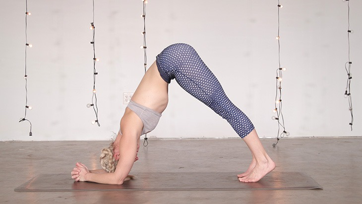 dolphin-pose-forearm-stand