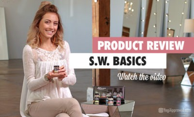 sw basics review article