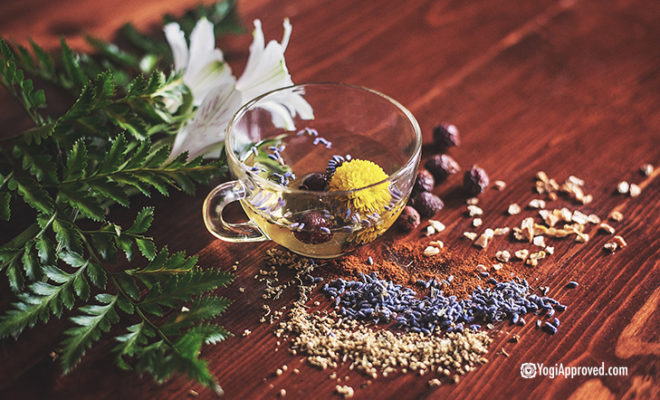 Herbs Healthy Lifestyled