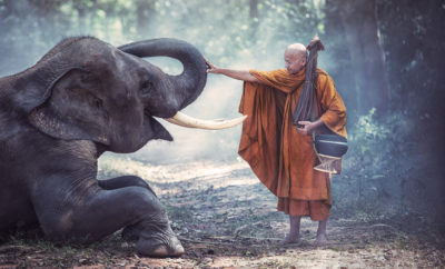 Thich Nhat Hanh Quotes feature 1