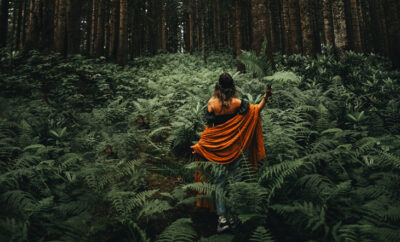 Forest Bathing Feature